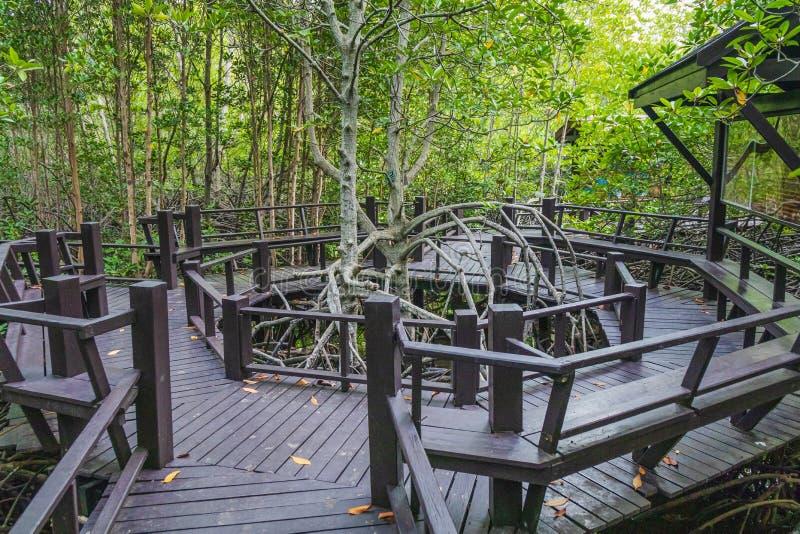 Le passage couvert au bois photos libres de droits