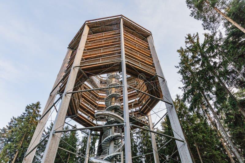 Le passage couvert de cime d'arbre lignting, traînée guidée dans l'arbre couronne Construction en bois avec une glissière au mili photo libre de droits