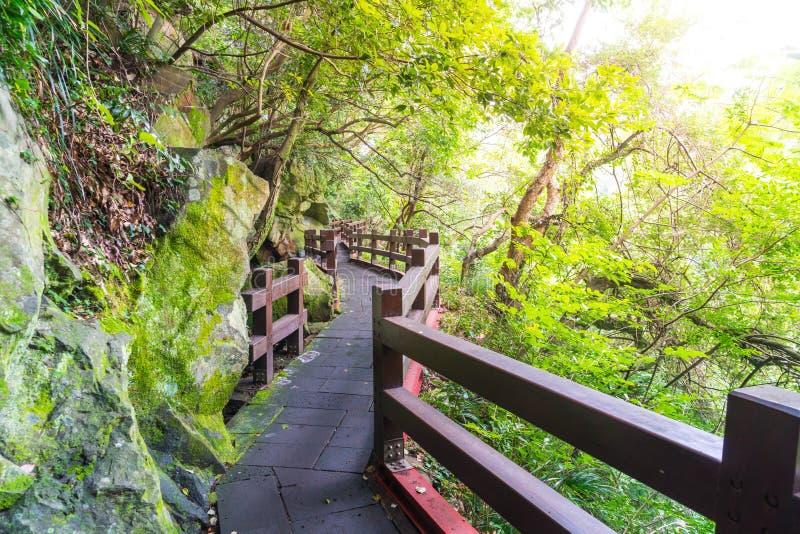 le passage couvert en bois dans le jardin chez Cheonjeyeon tombe, île de Jeju photographie stock