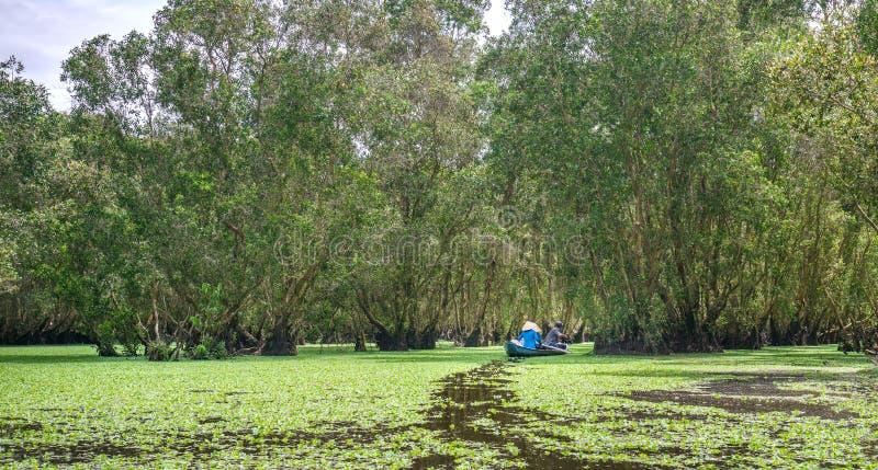 Le passeur prend le voyageur en tournée de bateau le long des canaux dans la forêt de palétuvier photo libre de droits
