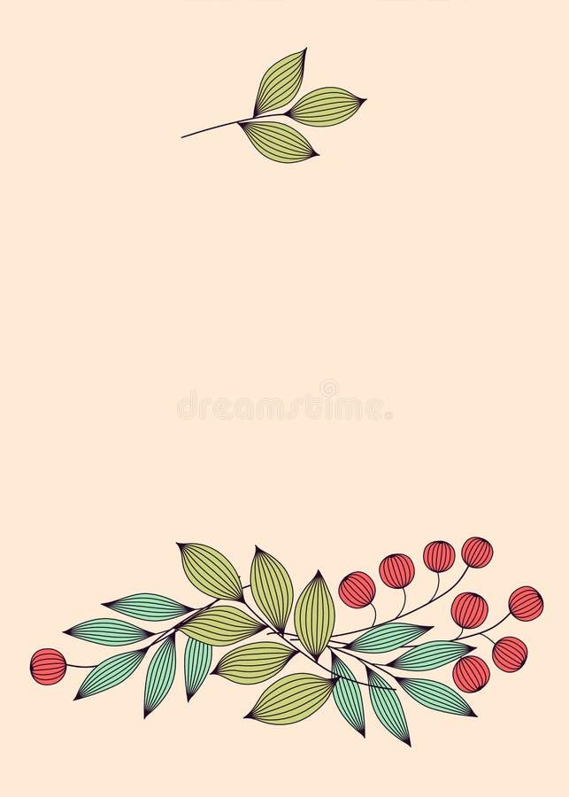 Le pastel a coloré les feuilles et les baies élégantes avec les calibres floraux de carte de veines, vecteur illustration de vecteur