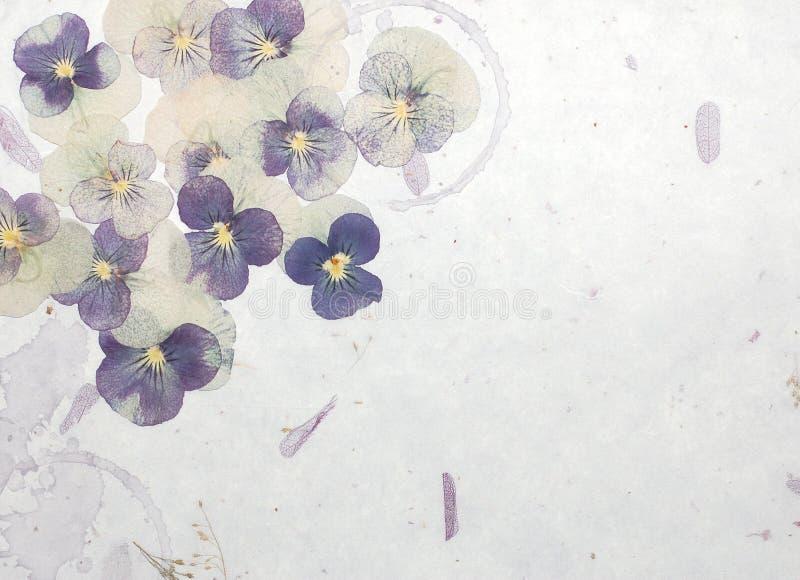 Le pastel fleurit le fond photos libres de droits