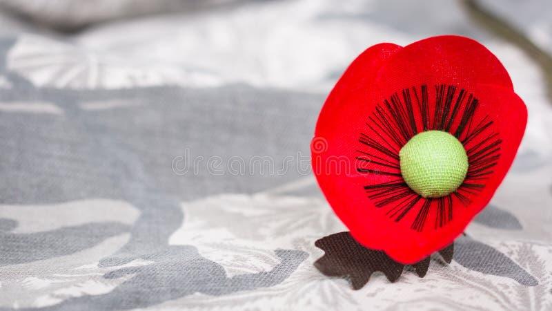 Le pavot rouge est un symbole de jour de vétérans de la Thaïlande image stock