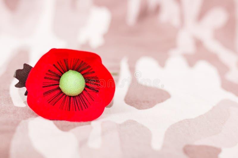 Le pavot rouge est un symbole de jour de vétérans de la Thaïlande photos stock