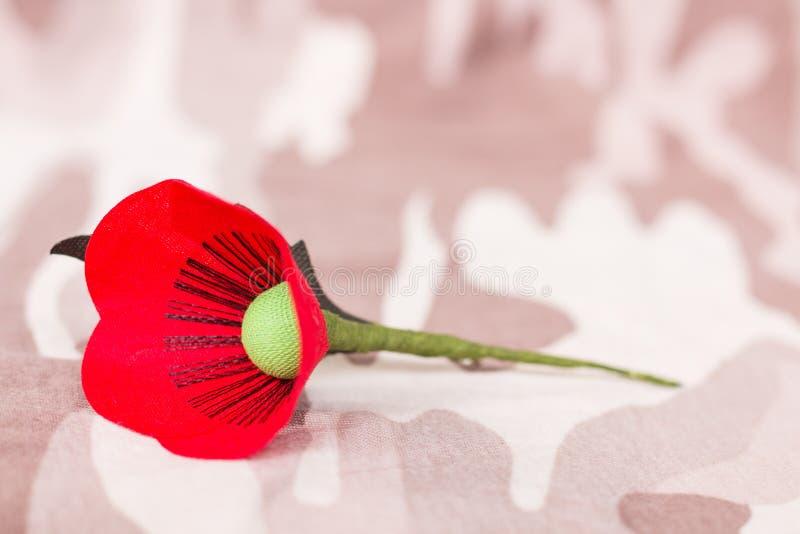 Le pavot rouge est un symbole de jour de vétérans de la Thaïlande image libre de droits