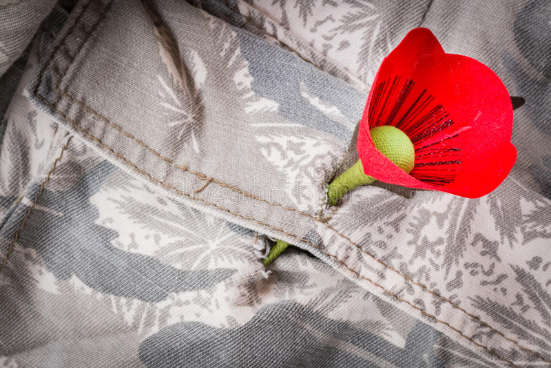 Le pavot rouge est un symbole de jour de vétérans de la Thaïlande images stock