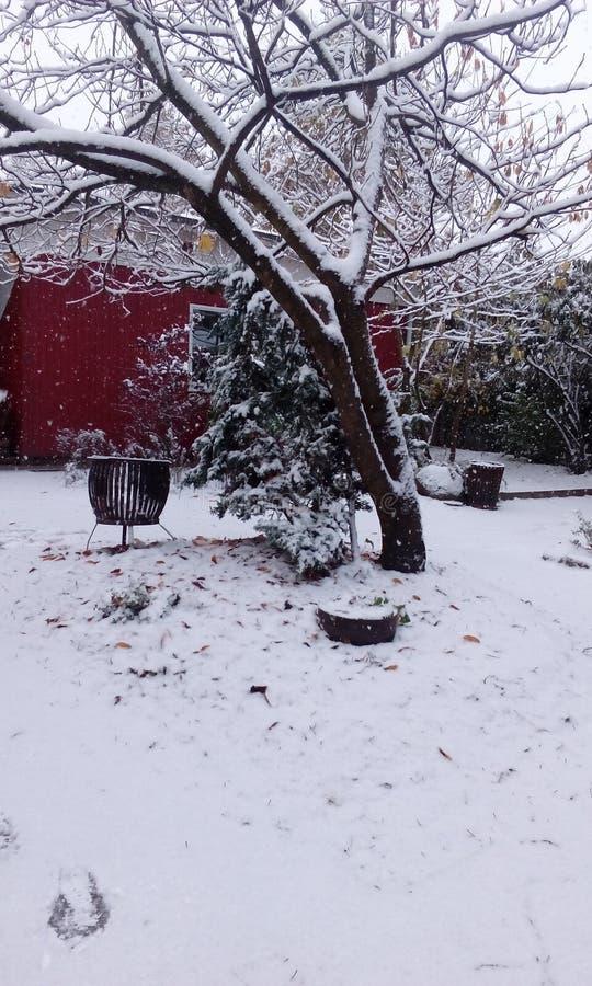 Le pays des merveilles d'hiver à l'école photo stock