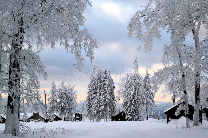 Le pays des merveilles d'hiver image libre de droits