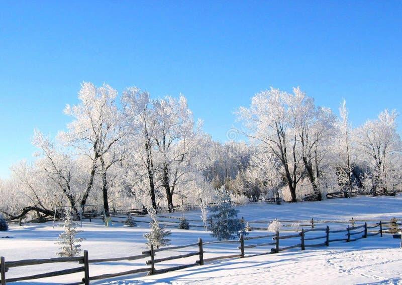 Le pays des merveilles de l'hiver images stock