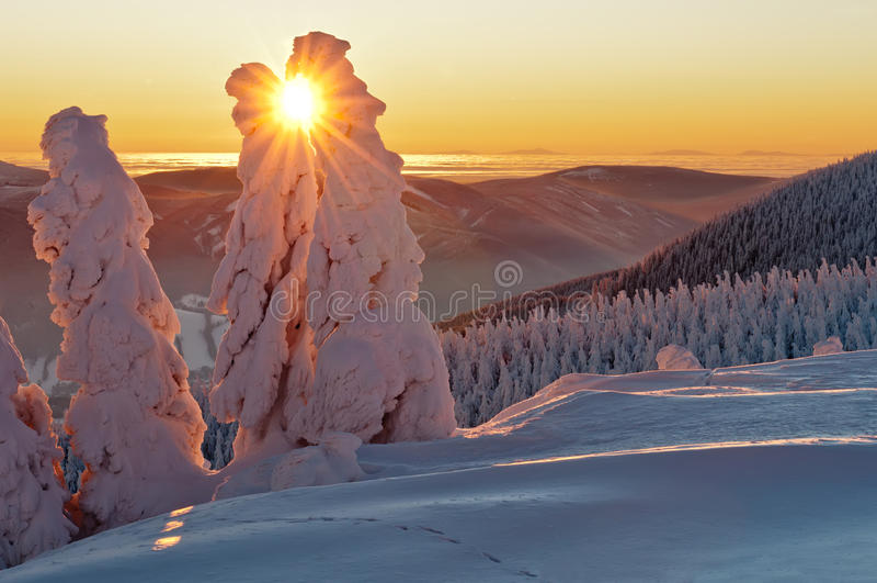 Le pays des merveilles de l'hiver photographie stock