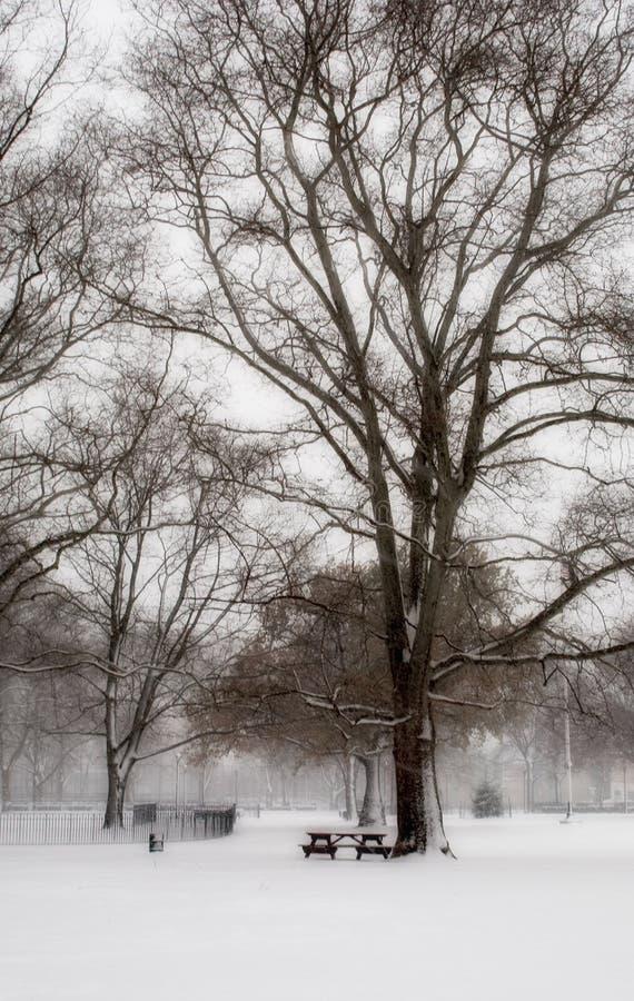 Download Le Pays Des Merveilles De L'hiver Photo stock - Image du nature, bench: 62932