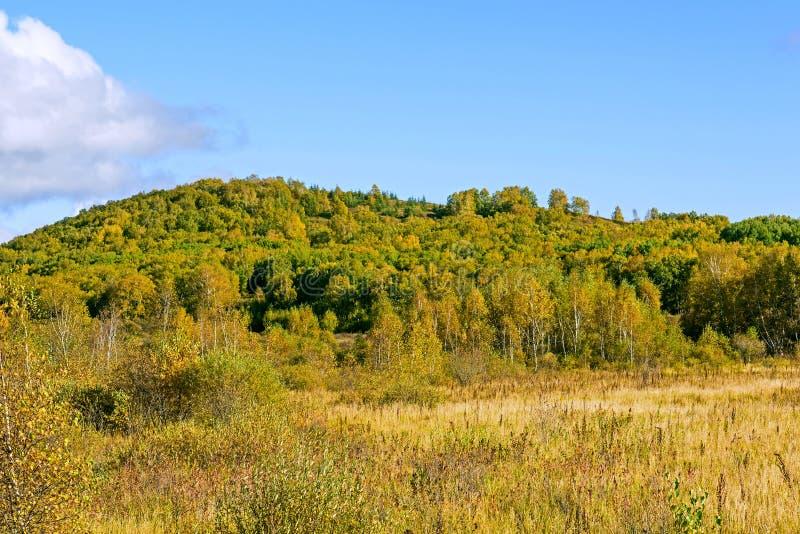 Le paysage d'automne de prairie photographie stock libre de droits
