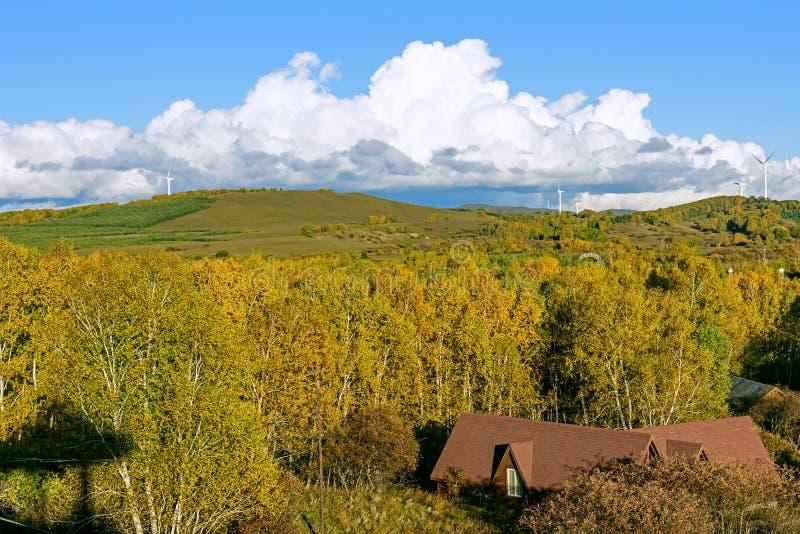 Le paysage d'automne de prairie photo stock