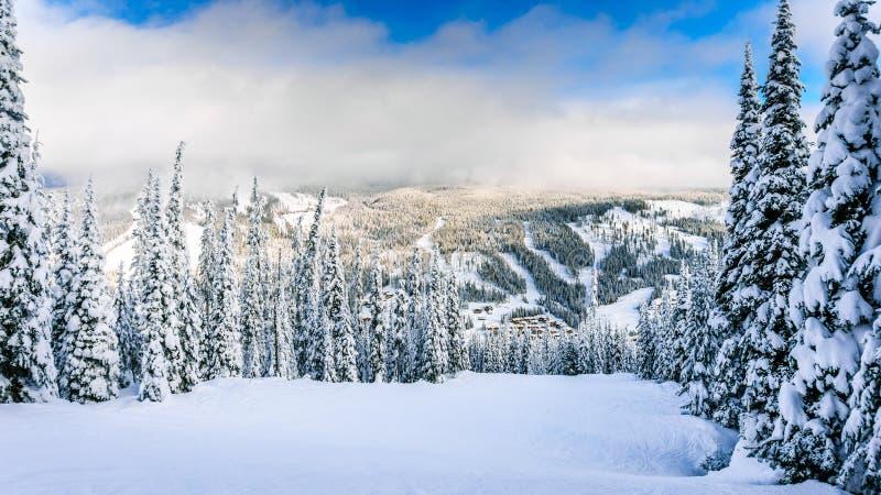 Le paysage d'hiver avec la neige a couvert des arbres sur Ski Hills près du village des crêtes de Sun image stock