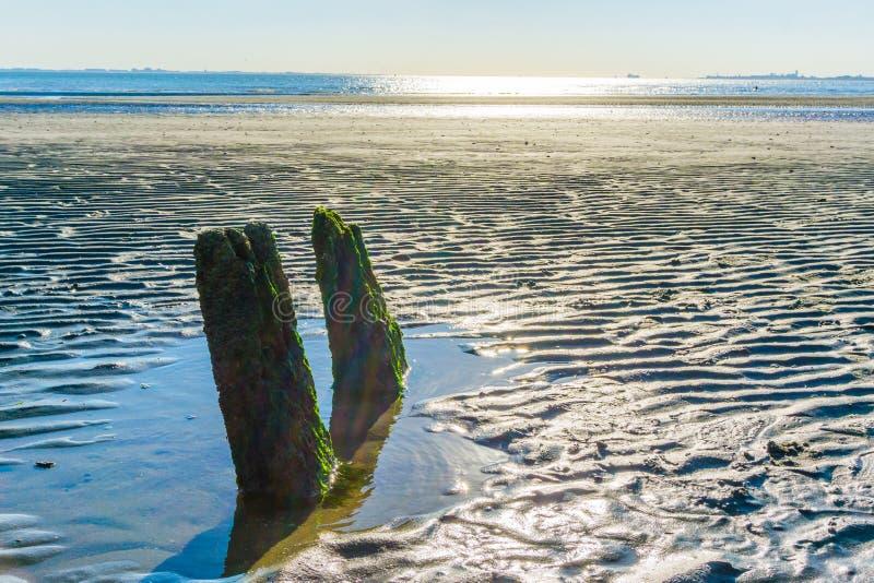 Le paysage 2 d'océan bascule dans la ligne sur la plage images stock