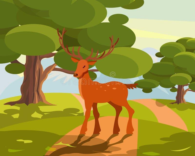 Le paysage de faune d'été, cerf commun avec de grands klaxons embranchés sur le fond vert de forêt dirigent l'illustration illustration libre de droits