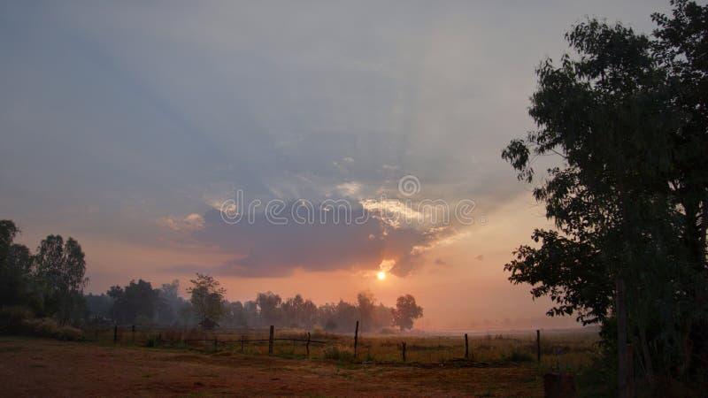 Le paysage de matin du champ avec le Soleil Levant photo libre de droits