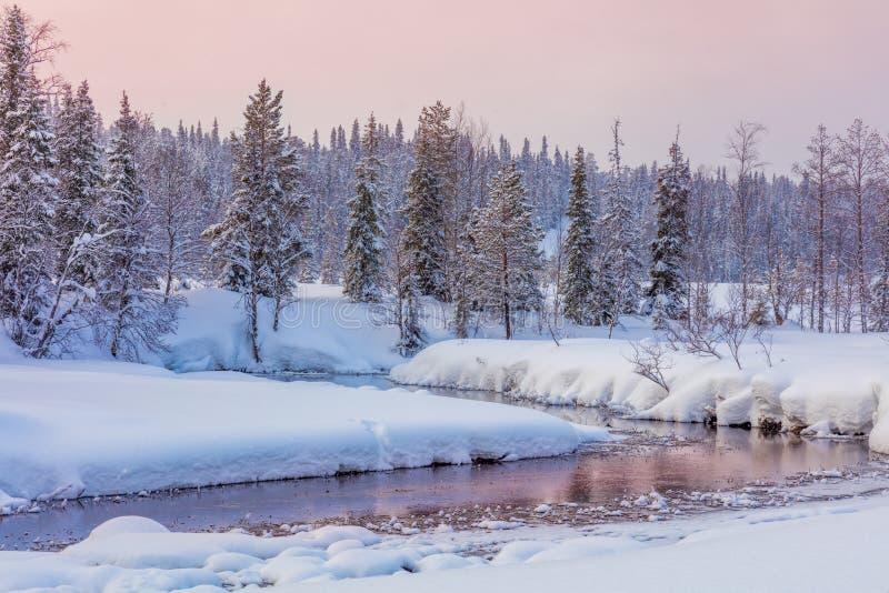 Le paysage de soirée d'hiver avec la forêt et les déchirent photos stock
