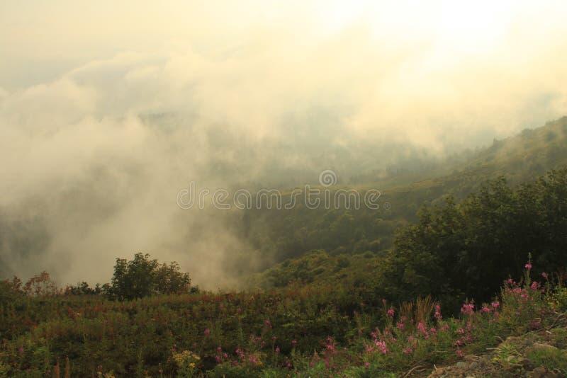Le paysage des montagnes au coucher du soleil en été photo stock
