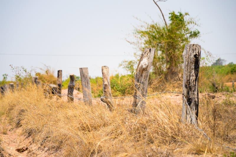 Le paysage des montagnes au Vietnam central, avec la barrière en bois faite de morts a mis le feu à l'arbre, et au champ d'herbe  image libre de droits