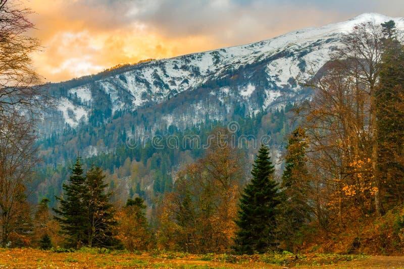 Le paysage des montagnes du Caucase du nord sont couverts de neige et de forêts à leur base dans l'automne en retard photo libre de droits