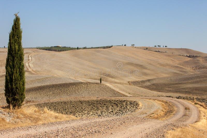 Le paysage rural de la Toscane photos libres de droits