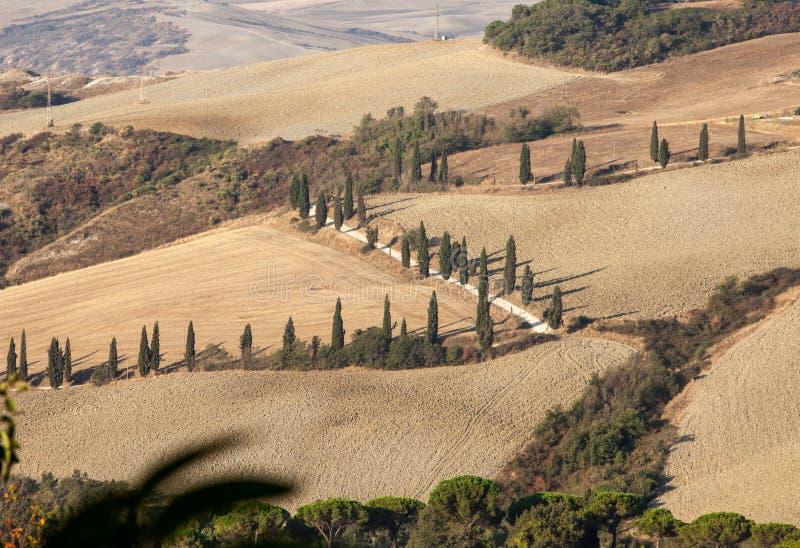 Le paysage rural de la Toscane images libres de droits