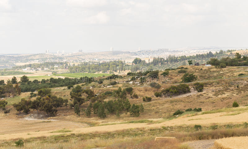 Le paysage urbain met en place la fleur, Modiin, Israël photos stock