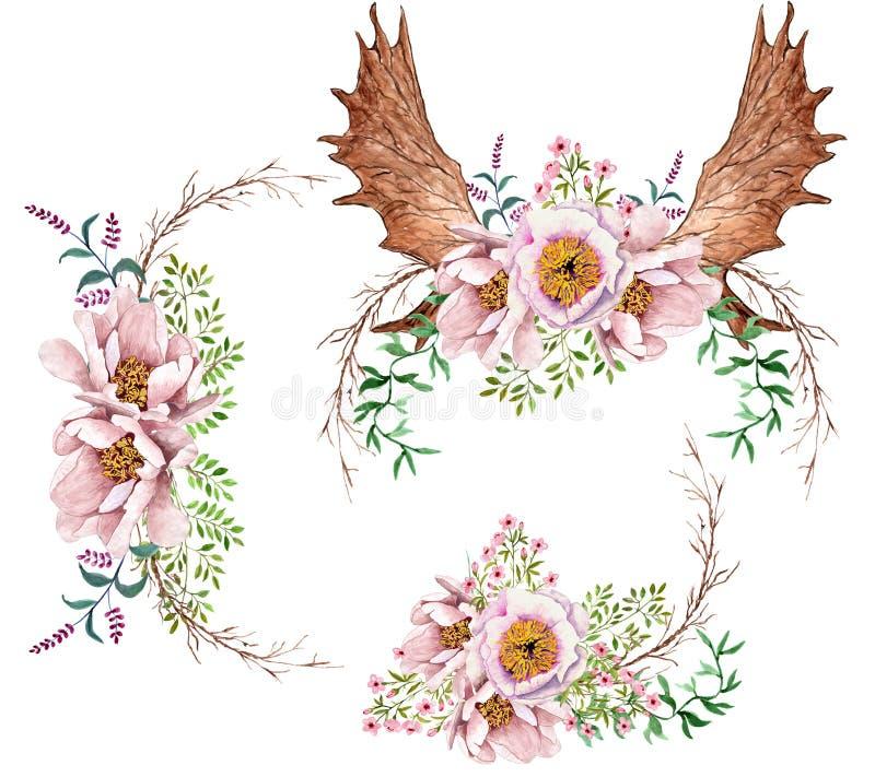 Le peonie dell'acquerello fioriscono i mazzi ed i corni floreali dei cervi illustrazione vettoriale