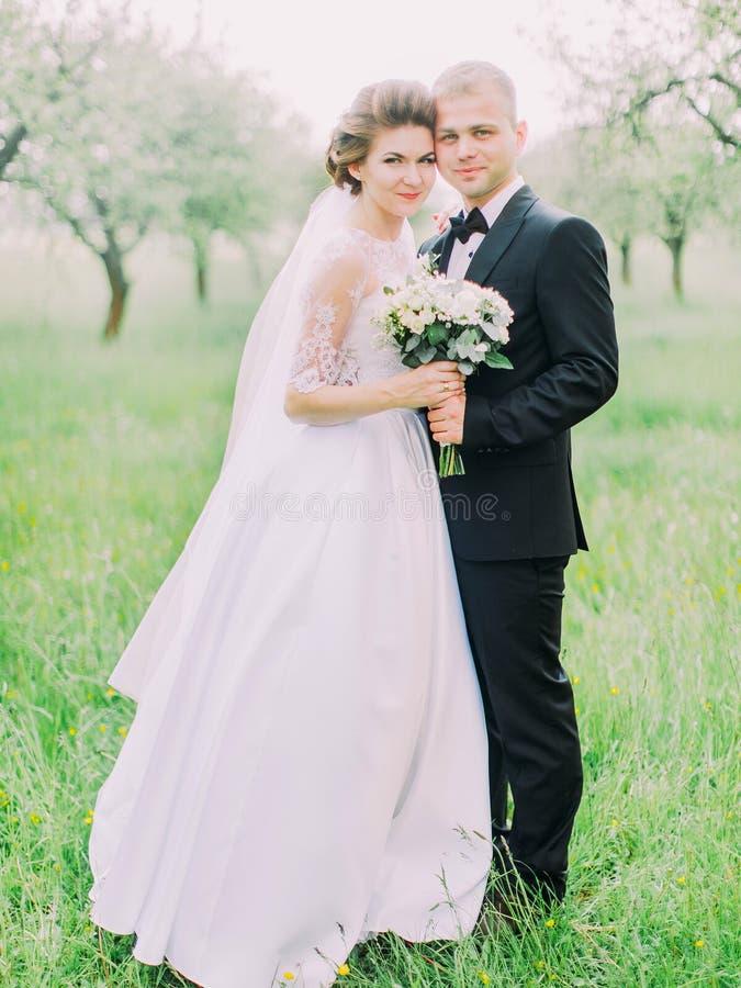 Le persone appena sposate stanno stando teste a testa ai precedenti del campo verde fotografia stock libera da diritti