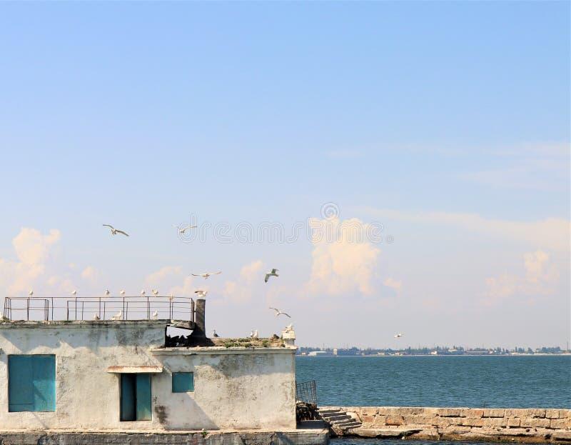 Le petit bâtiment situé sur une falaise, quelques mètres du troupeau de la côte A de la Mer Noire des mouettes vole au-dessus du  photographie stock
