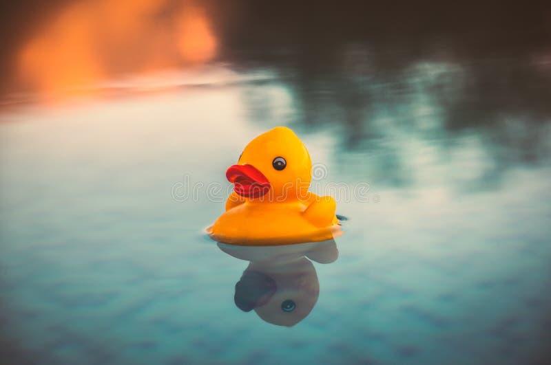 Le petit canard en caoutchouc jaune flottant sur une piscine d'infini au coucher du soleil avec les réflexions qui ressemblent à  photographie stock