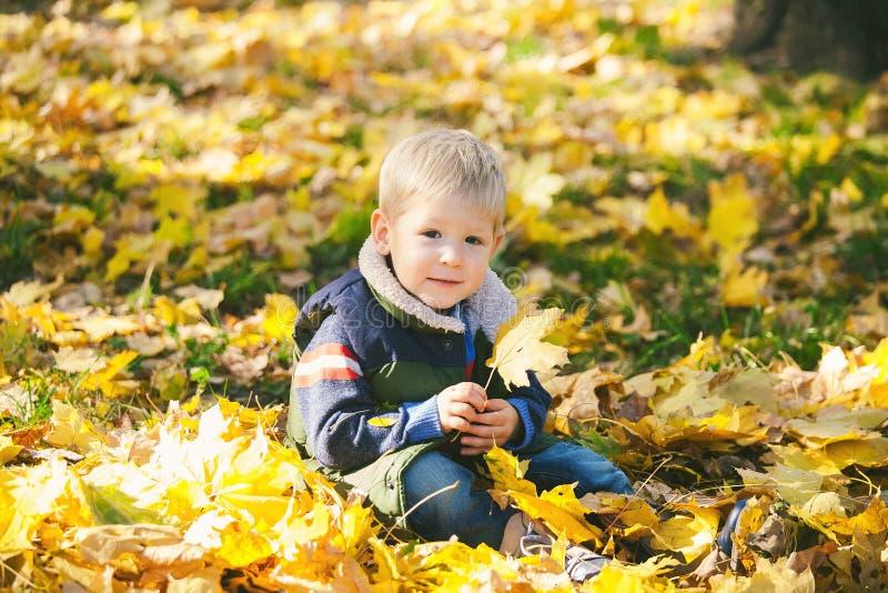Le petit enfant mignon jouant avec l'orange d'automne part dans le parc photographie stock