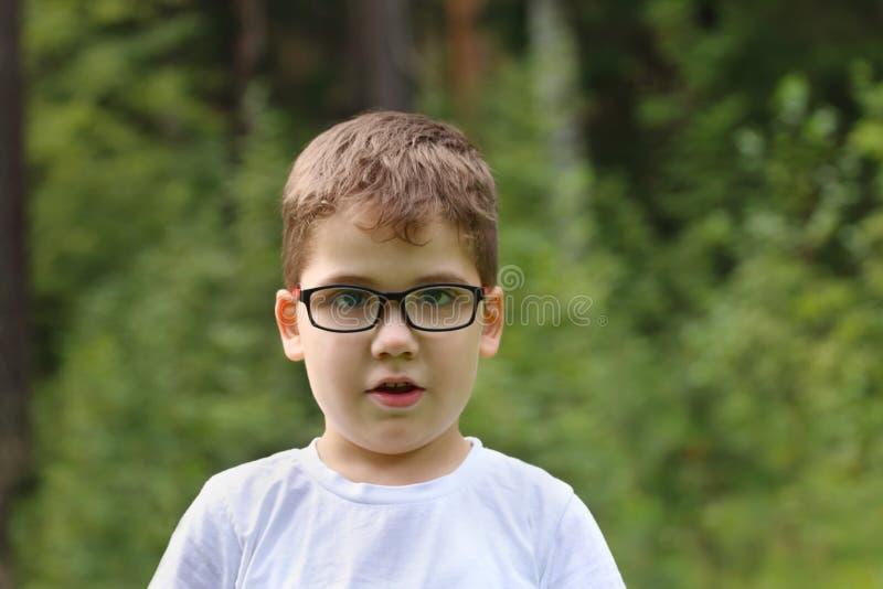 Le petit garçon beau en verres regarde l'appareil-photo photo stock