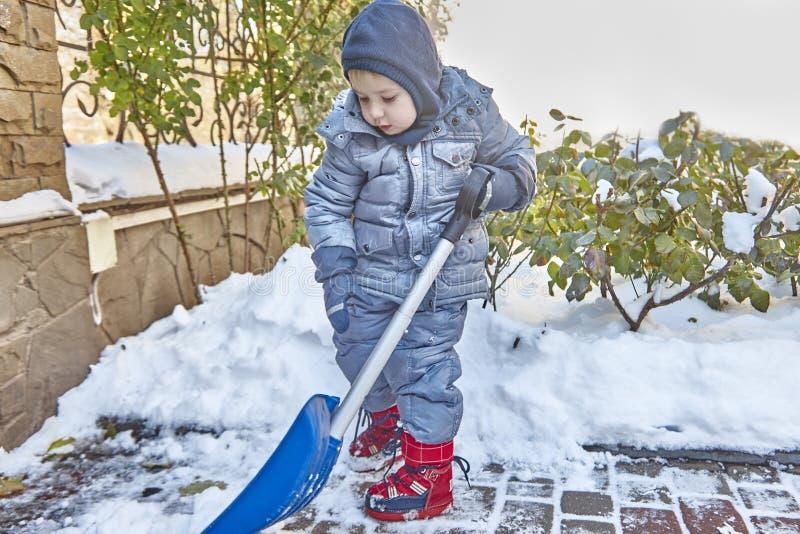 Le petit garçon caucasien pelle la neige dans la cour avec de beaux rosiers neigeux Enfant avec des jeux de pelle dehors en hiver images stock