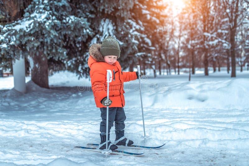 Le petit garçon de 3-5 années, sapins verts de neige de contexte de ville d'hiver, monte les skis des enfants Premi?res ?tapes de image stock