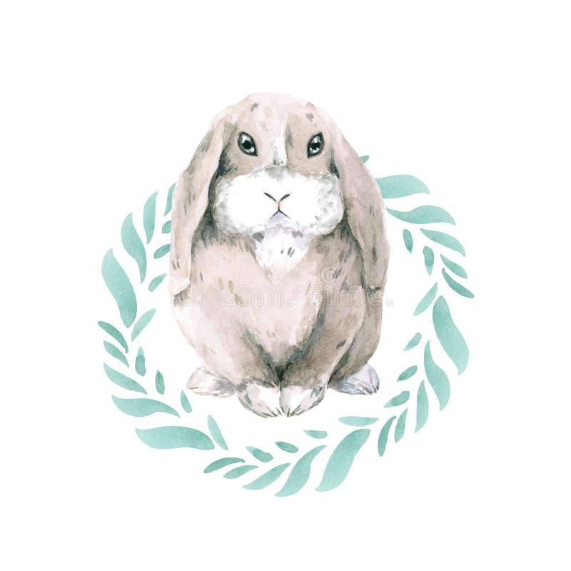 Le petit gris mignon a repéré le lapin dans un cadre rond des feuilles vertes Lièvres d'isolement sur le fond blanc Lapin orienta illustration libre de droits