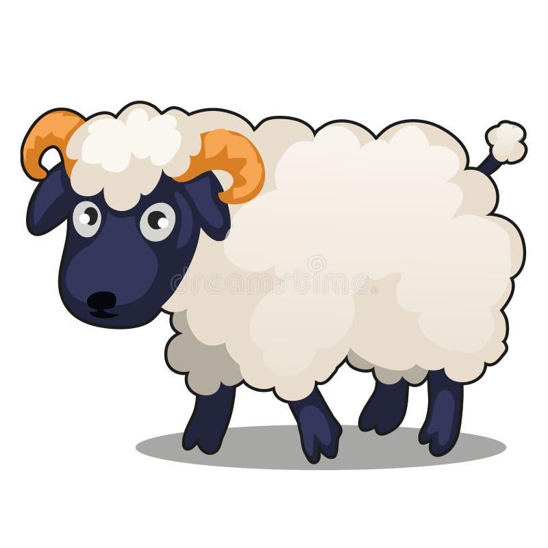 Le petit mouton mignon d'animal de ferme se tient d'isolement sur le fond blanc Illustration de plan rapproché de bande dessinée  illustration stock