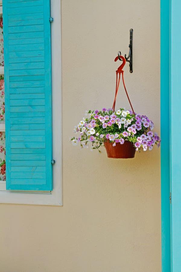 Le petunie in vaso di fiore che appende sul sostegno decorativo vicino alla finestra shutter immagine stock