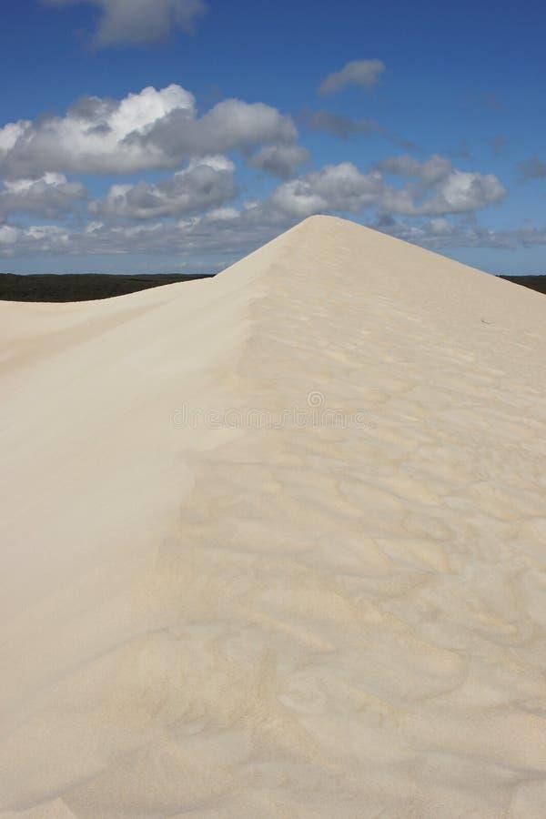Le peu de Sahara, Australie photos libres de droits