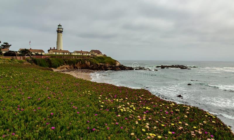 Le phare de point de pigeon avec le rivage et la floraison fleurit photos stock