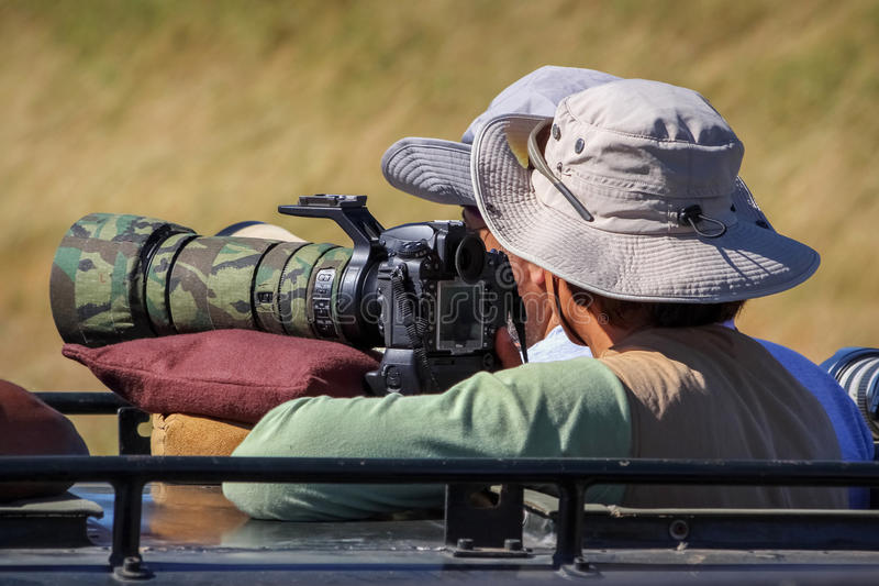 Le photographe prend des photos des animaux sauvages en Afrique photos stock
