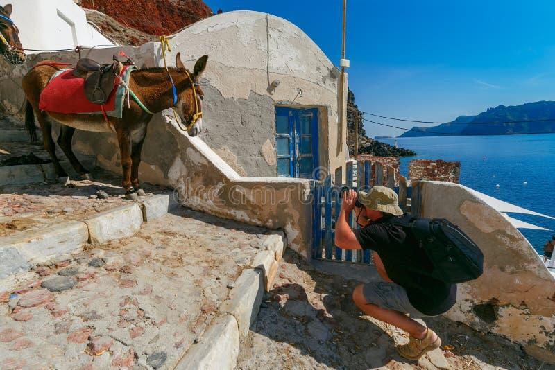 Le photographe prend l'âne de photos, Oia, Santorini photo libre de droits