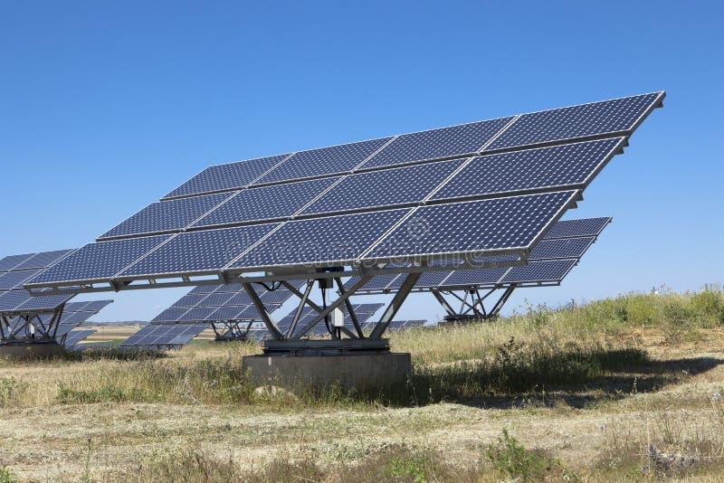 Le photovoltaics solaire lambrisse le champ photos stock
