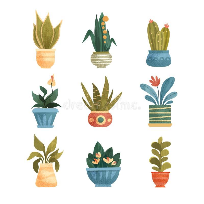 Le piante da appartamento in vasi hanno messo, casa o illustrazioni elegante di vettore della decorazione dell'ufficio su un fond illustrazione di stock