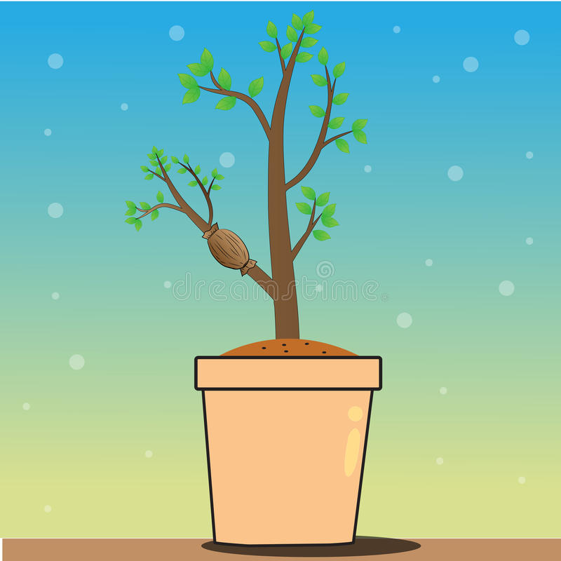 Le piante dell'innesto illustrazione vettoriale