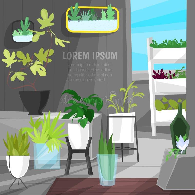 Le piante in vasi da fiori vector l'aloe botanico dell'interno dei cactus delle piante da appartamento conservate in vaso per la  illustrazione di stock