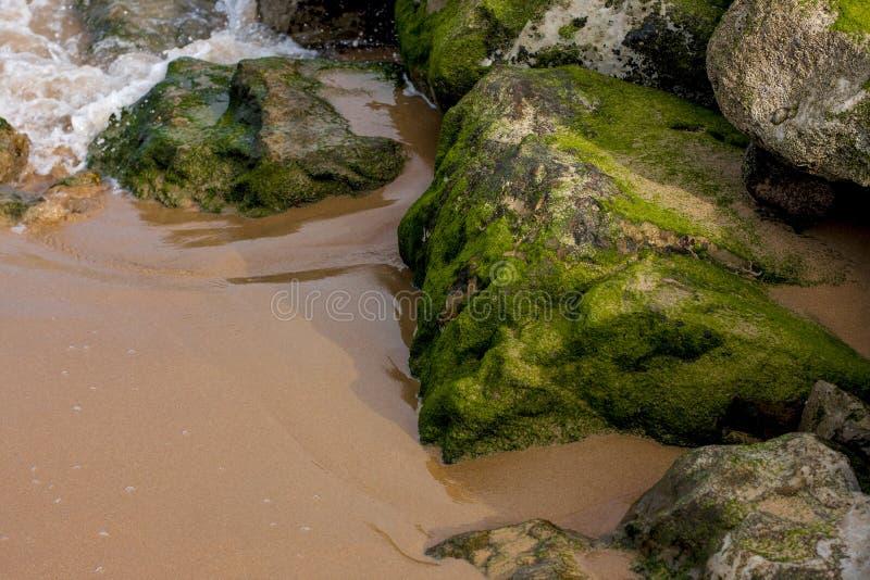Le pietre di verde in sabbia e nelle onde di bianco fotografie stock libere da diritti
