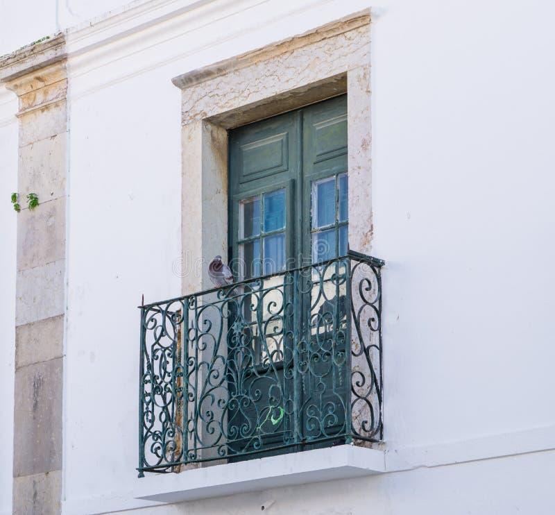 Le pigeon/colombe se repose sur le balcon de la maison traditionnelle à Faro, Algarve, Portugal photo stock