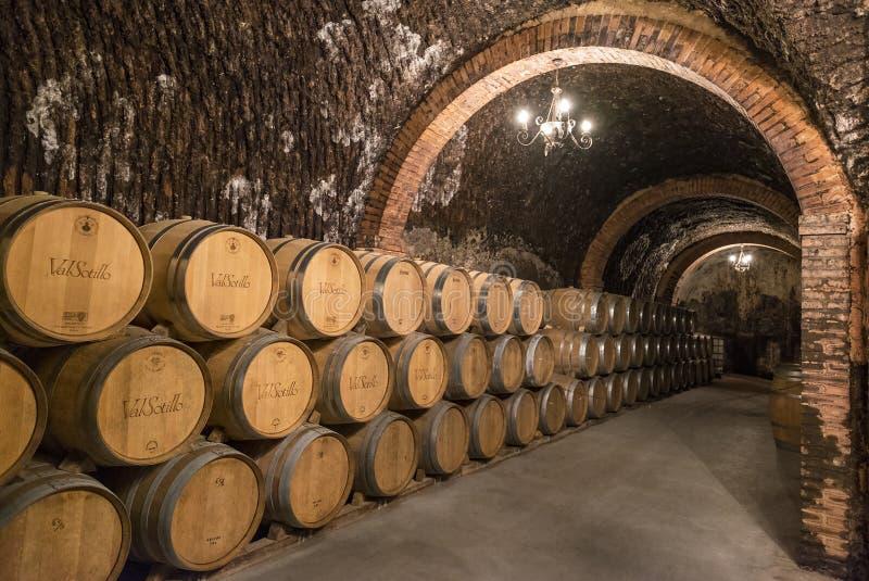 Le pile di barilotti di vino hanno riempito di invecchiamento del vino rosso nei tunnel sotterranei della regione del vino di Due immagini stock libere da diritti